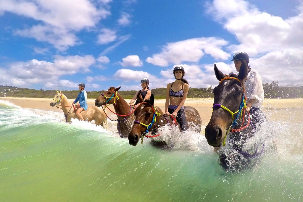 Award winning tour operator Rainbow Beach Horse Rides