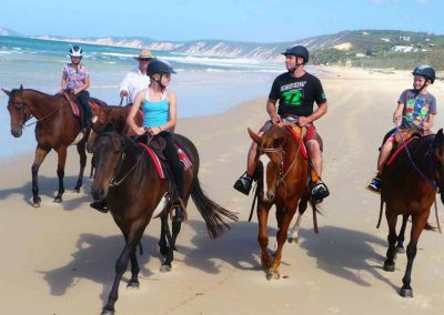Our family beach ride is the highlight of most visitors holiday