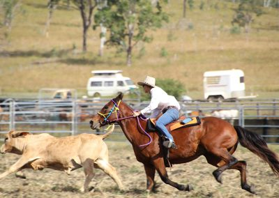 Helen and Dude show them how it is done at the campdraft