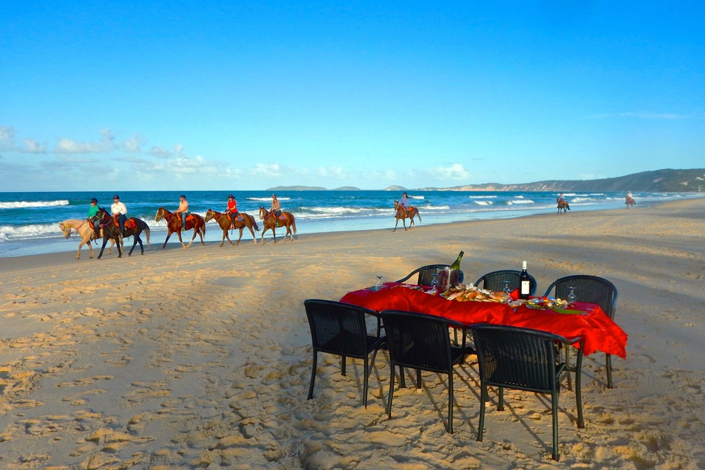 Wedding on horseback, marriage proposal, renew your vows, birthday celebrations.