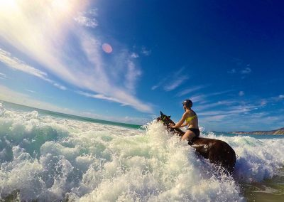 Experienced riders swimming with the horses